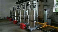 LSS0.1-0.7-Y/Q0.1吨小型免检燃气蒸汽发生器