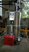 免检0.2吨小型节能器燃气蒸汽发生器锅炉