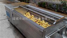 DZ-2000土豆毛辊去皮清洗流水线