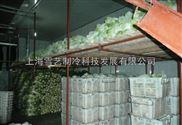 900平方果蔬保鲜冷库设计建造