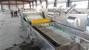 果蔬加工生产线设备