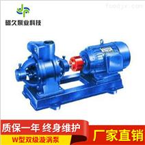 W型卧式耐腐蚀漩涡泵