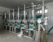 中型小麦面粉加工设备