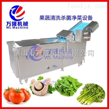 厂家直销多功能气泡清洗机 蔬菜清洗设备