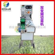 TS-115-进口切菜机 工作稳定产量大 切各种叶菜类蔬菜 适合中央厨房使用