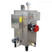 旭恩50KG液化气蒸汽发生器措施