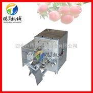 供应苹果削皮机 苹果去皮机 苹果削皮捅心分瓣机厂家