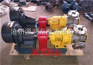 發貨江西NYP8-1.0不銹鋼高粘度轉子泵