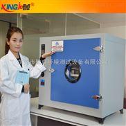 精密干燥试验箱鼓风烘箱恒温试验机
