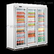 龙海饮料冷柜