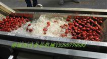 昊昌水果清洗机气泡式