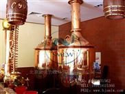 smlw500-自酿啤酒发酵设备有几个发酵罐
