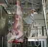 牛用屠宰分割设备牛用劈半锯