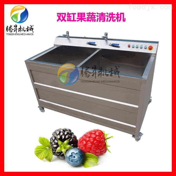 西红柿紫菜清洗机 双缸气泡式臭氧洗菜机