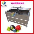 TS-B酒店专用果蔬洗菜机 豌豆气泡清洗机