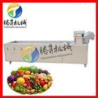 TS-X300供应蔬菜大枣清洗机多功能洗菜机
