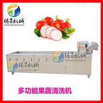 气泡循环清洗 自动消毒洗菜机 蔬果加工设备