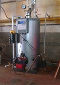 0.1噸小型免檢燃氣鍋爐發生器