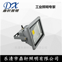 ODFE5166厂家报价ODFE5166-30W大功率LED投光灯