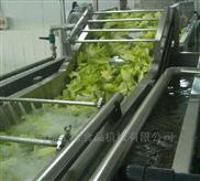小型洗菜机,香葱清洗机,洗水果机器
