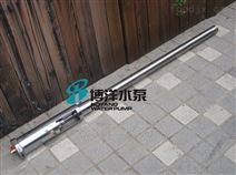 FY-1.2T型气动不锈钢浆料泵,插桶泵