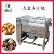 TS-M300-小型毛辊土豆清洗去皮机