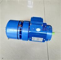 厂家供应BMD6324紫光刹车电机