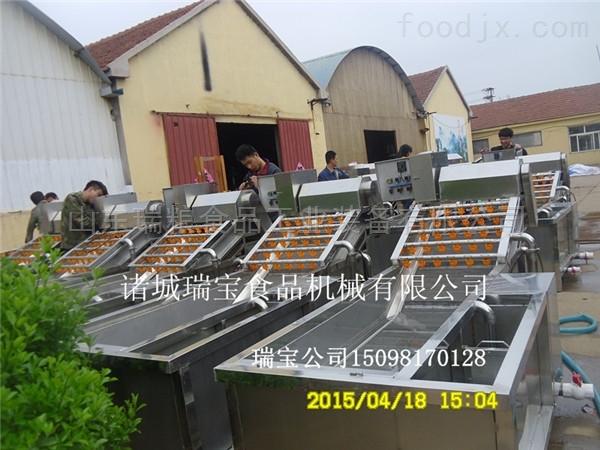 定制优质蔬菜清洗机厂家  不锈钢气泡设备