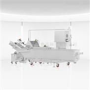 环速大型洗菜机自主研发生产