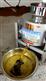 立式菜籽油滤油机