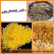 朗正自主研发营养大米设备