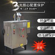 厂家直销全自动小型电热蒸汽发生器