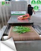 湖北绿色蔬菜大量批发杀青干燥机微波设备