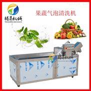 自动青菜水果洗菜机 冲浪气泡清洗机