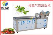 腾昇机械直销食品清洗机 气泡式洗菜机