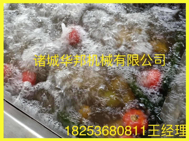 果蔬清洗机 橙子苹果清洗 水果气泡清洗设备