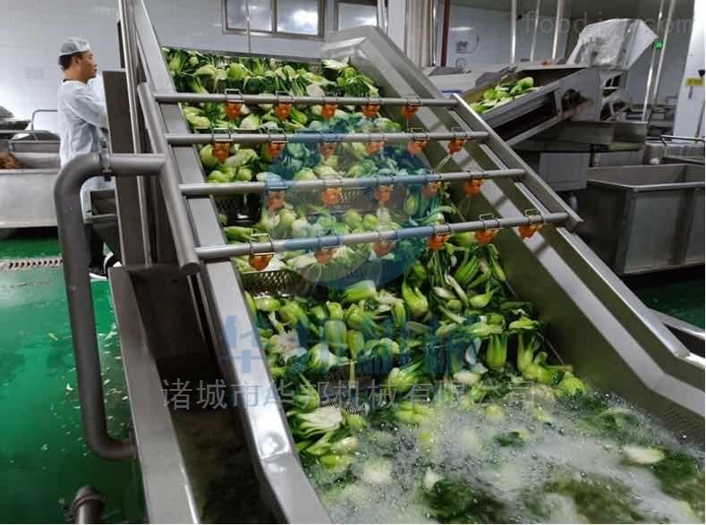 华邦机械蔬菜清洗机 气泡全自动洗菜机
