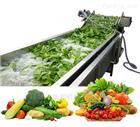 HB-3500ZN橄榄菜气泡清洗机  商用果蔬多功能清洗设备