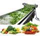 气泡式 果蔬清洗机 蔬菜清洗设备 效率高
