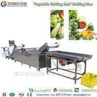 净菜加工设备 果蔬清洗风干生产线