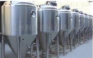 啤酒發酵罐 啤酒生產線