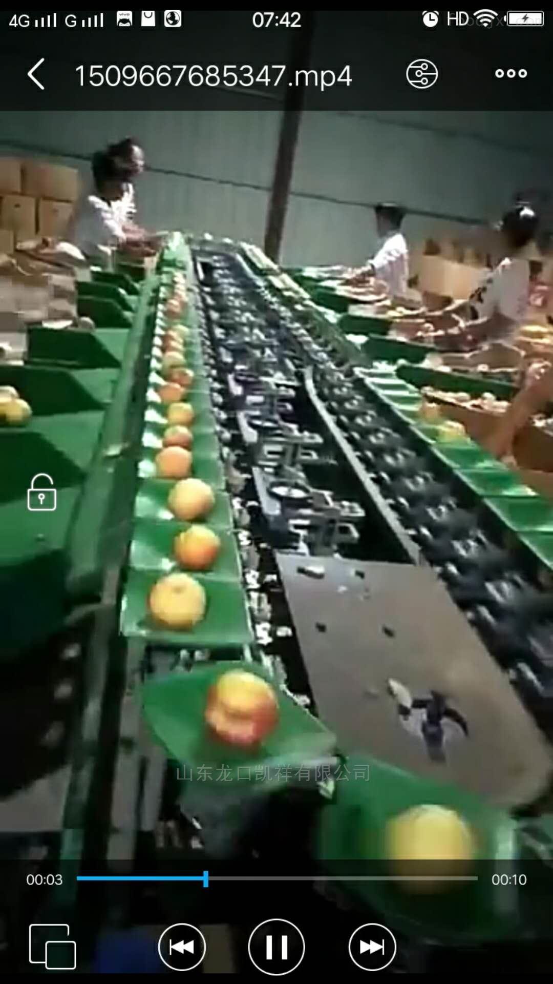 新型樱桃选果机 预冷分选机
