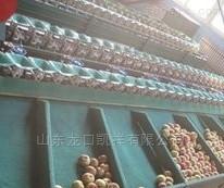 广西青枣分选机 重量分选青枣大小等级