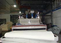 乳胶垫工业微波干燥设备
