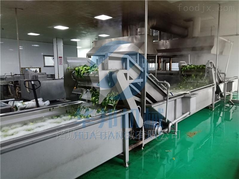 3500型 供应蔬菜清洗机 果蔬清洗加工设备