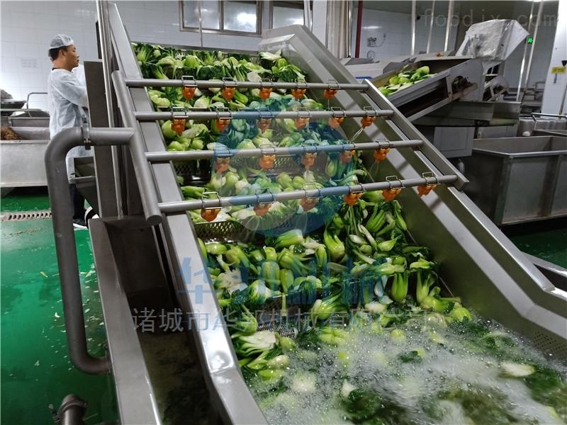 果蔬清洗机 蔬菜清洗设备 华邦直销质保两年
