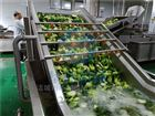 HB3500果蔬清洗机 蔬菜清洗设备 华邦直销质保两年