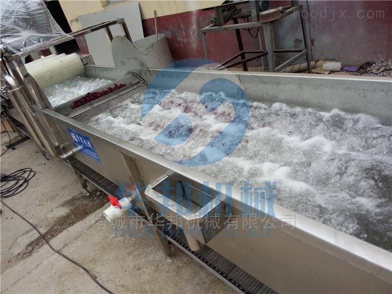 果蔬清洗设备厂家直销气泡清洗机