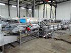 MTQX-J5000超市配送蔬菜清洗设备 净菜加工流水线