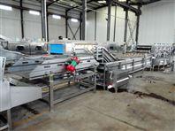 MTQX-J5000根茎类蔬菜清洗机